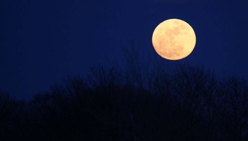 Qu efecto tiene la luna en los hombres y en las mujeres for Los jardines de la luna