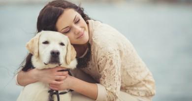 Aseguran que cuidar un perro trae beneficios para la salud mental
