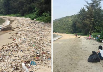 #Trashtag Challenge, el reto viral que busca eliminar la basura del medio ambiente