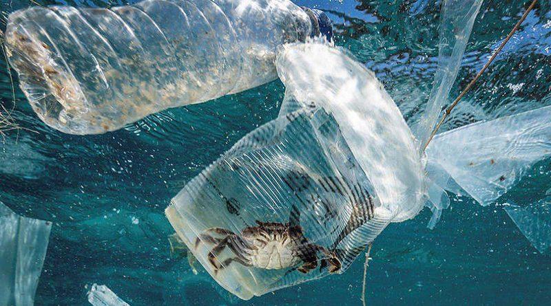Peligro: Encuentran plástico en el lugar más profundo del planeta
