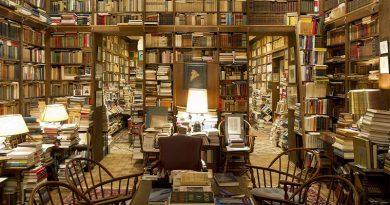 20 de las librerías más bonitas que te puedas imaginar